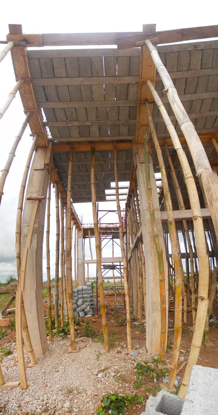 BambooStructureCHD